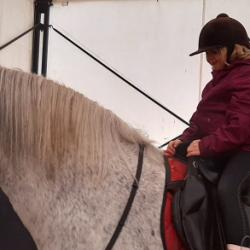konie-warszawa