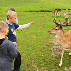 oboz-dla-dzieci